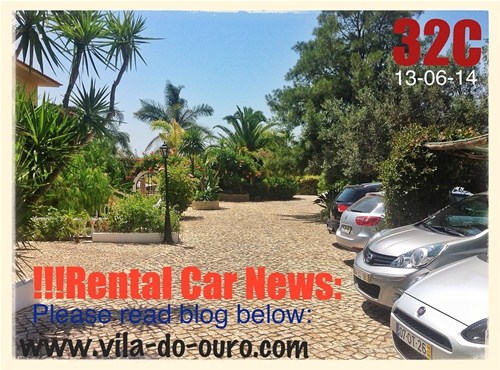 News from our Rental Car Company
